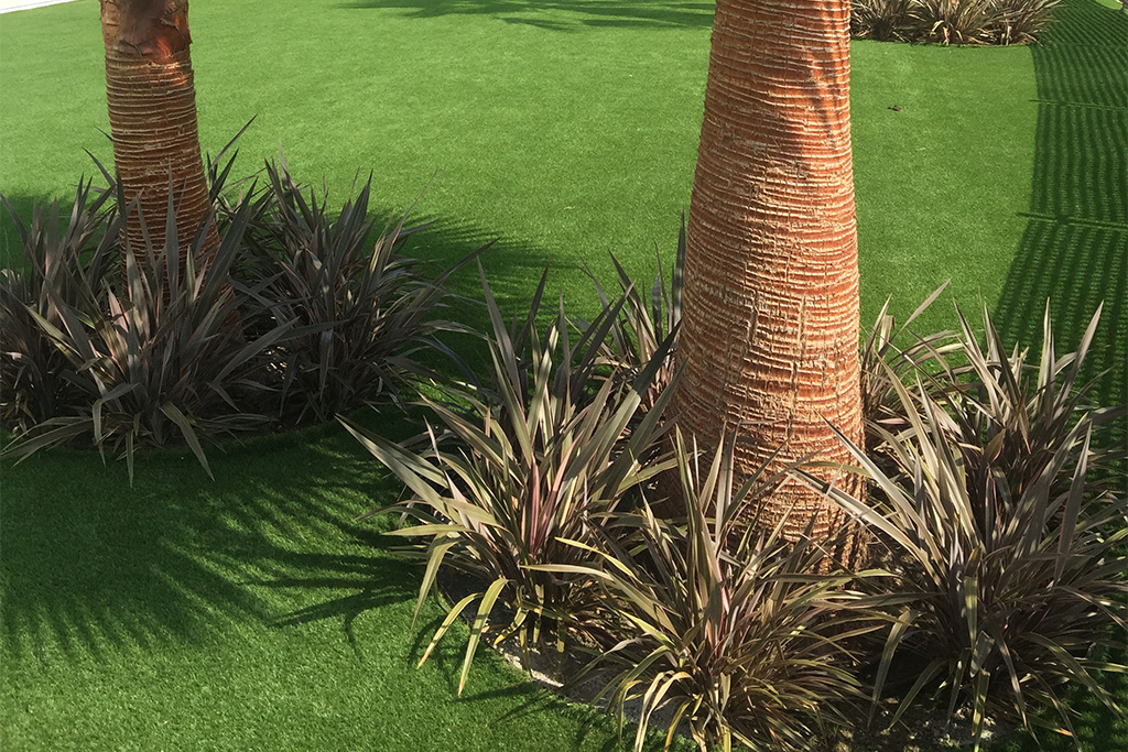 Los bordes de cesped artificial quedan preciosos plantando Phormium de variantes de crecimiento mediano y utilizando separadores de césped de calidad.