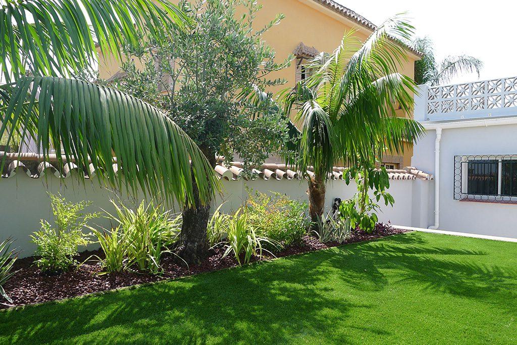 Cesped artificial con Kentia y olivo creando sombras