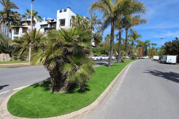 Medianera con cesped artificial y palmeras